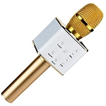 Bling Microphone and Speaker 2-in1- GOLD